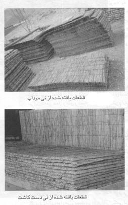 نی در صنعت ساختمان - سایت های معماری - نی در ساختمان - مقاله های معماری و عمران - علی شفیع زاده