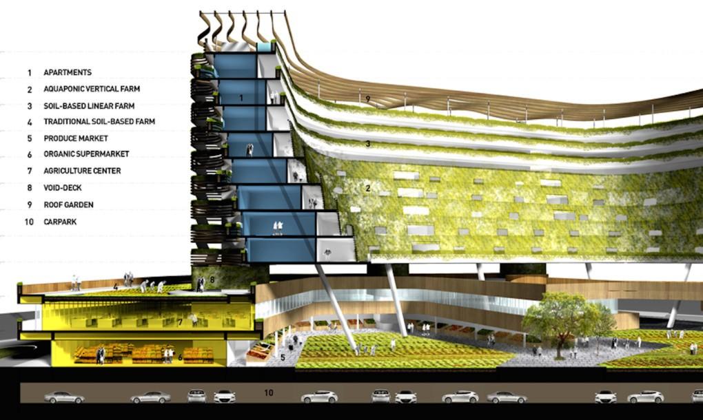 اخبار معماری,نمونه موردی مزرعه سالمندان,نقشه مرکز سالمندان,پارساکد,معماری,parsacad,parsacad.com,parsacad.ir,parsicad.ir,